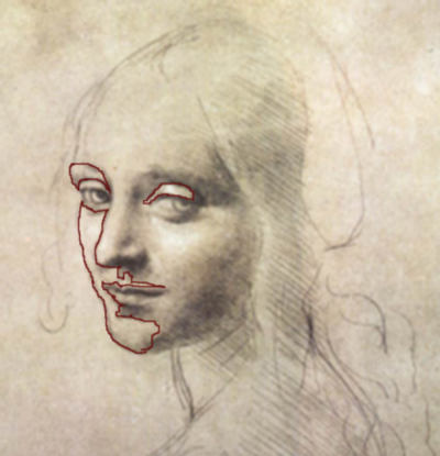 Leonardo Da Vinci's drawing-do you see tiny negative spaces within the face?