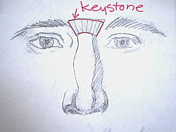 Learn how to draw a nose - keystone area