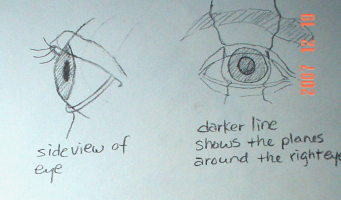 how to draw eyes:they are embedded in the sockets