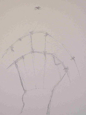 how to draw hands-demo 2