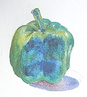 watercolor demo pepper 9