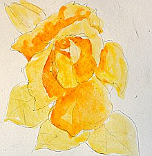 watercolor lesson paint a rose 2