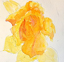 watercolor lesson paint a rose 3