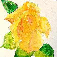watercolor lesson paint a rose 4