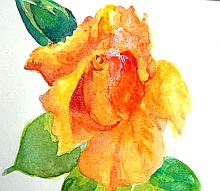 watercolor lesson paint a rose 5