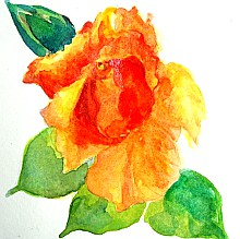watercolor lesson paint a rose 6