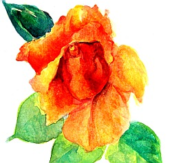 watercolor lesson paint a rose 7
